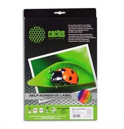 (1001863) Этикетки Cactus white А4 52.5x21.2мм 50 sheets - фото 11352