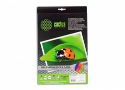(1001862) Этикетки Cactus С-30485254 A4 25.4x48.5мм 40шт на листе/50л.