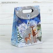 Пакет подарочный «Кому-то очень хорошему!», 12 × 16 × 6 см