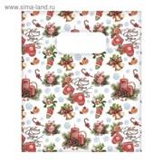 Пакет подарочный полиэтиленовый «Зимний уют», 17 × 20 см