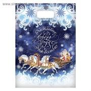 Пакет подарочный полиэтиленовый «Тройка лошадей», 17 × 20 см
