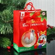 "(1018200) Новогодний шар под раскраску ""Дед мороз"" с подвесом, краска 3 цв по 2 мл, кисть   3462446"