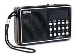 (1016285) Радиоприемник портативный Сигнал РП-221 черный USB microSD