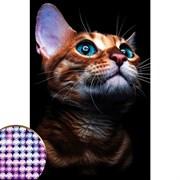 """(1017289) Алмазная вышивка с частичным заполнением """"Взгляд кошки"""" 20*30 см на холсте   4176754"""